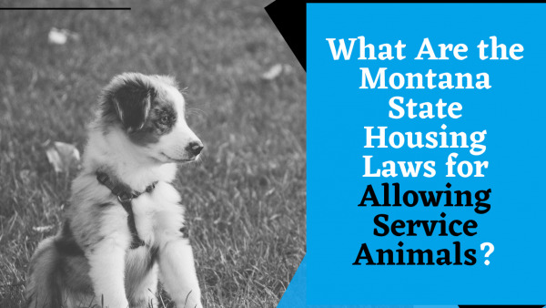 What Are the Montana State Housing Laws for Allowing Service Animals?